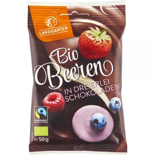 Fructe de padure liofilizate invelite in ciocolata bio