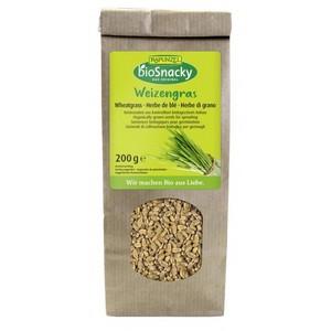 Seminte de iarba de grau bio pentru germinat